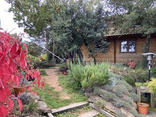Casa a Carrer roca (la), 6. Casa de fusta amb jardí i bones