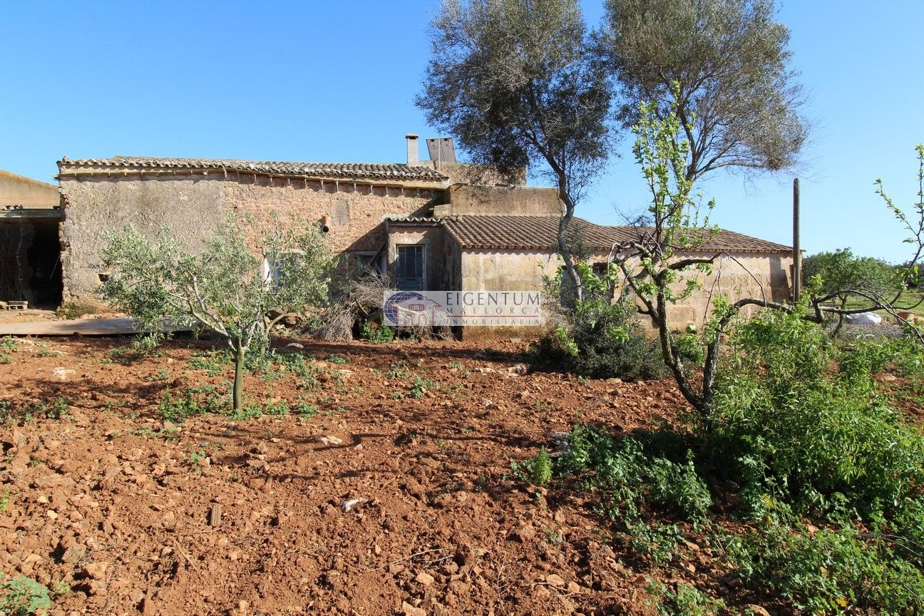 Country house in Sant Llorenç des Cardassar. Finca cerca de manacor