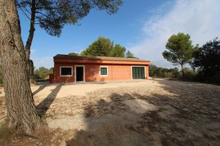 Country house in Manacor Centre. Finca entre manacor y felanitx