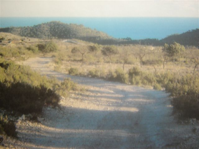 Rural plot in Relleu. Oportunidad finca rustica