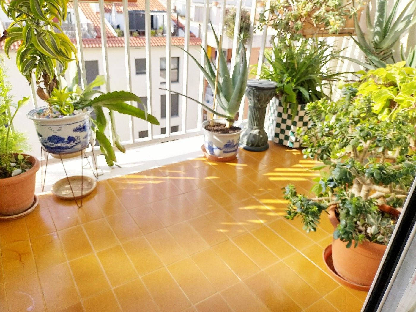 Apartment in Passeig Maritim