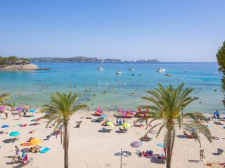 Location Appartement à Peguera. Mallorca next properties - paguera beach front apartment