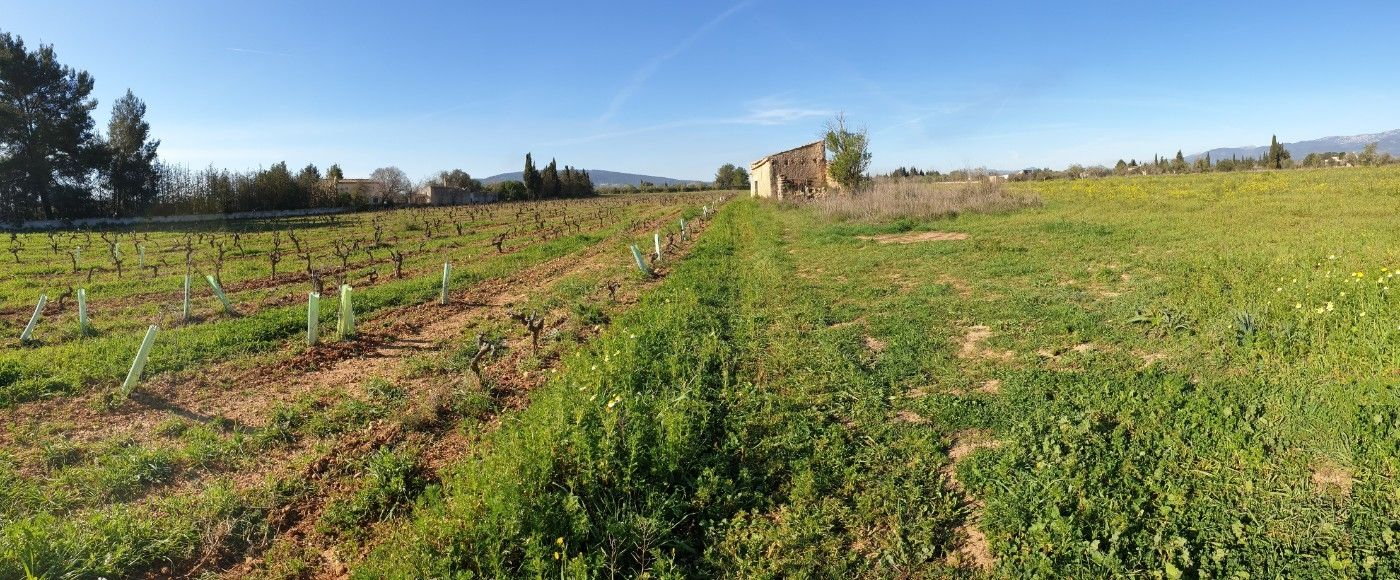 Rural plot in Ma-3021, s/n. Biniali:finca rustica edificable