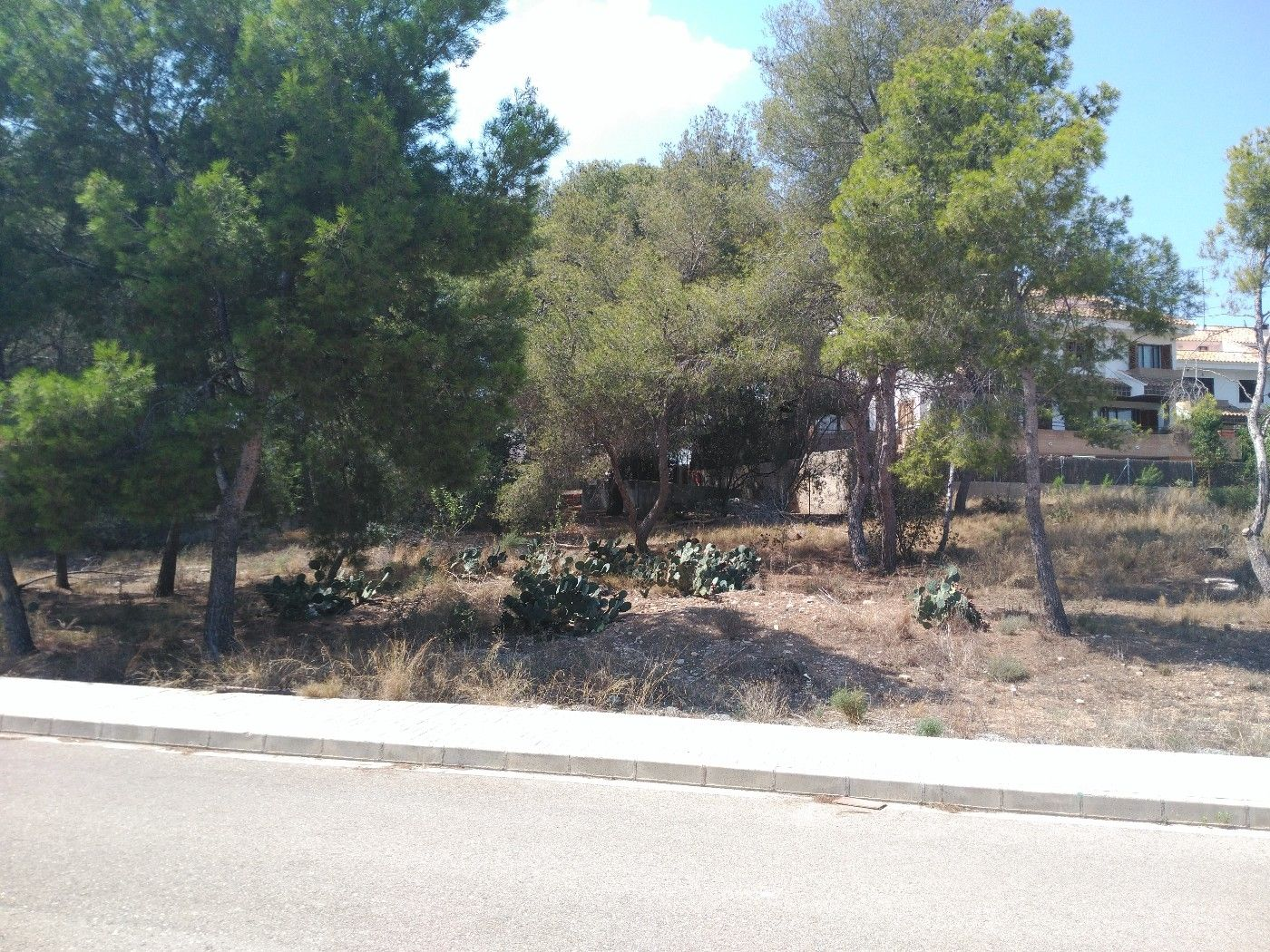 Residential Plot in Vicente tormo, 2. Oportunidad
