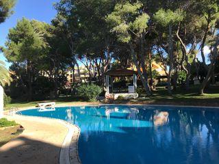 Apartamento en Santa Ponça. Ambassador park santa ponsa planta baja reforma...