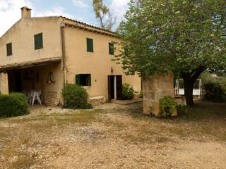 Rural plot in Manacor Centre. Finca en manacor