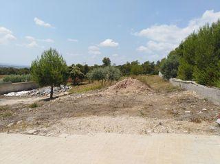 Terrain urbain dans Cabra del Camp. Haz tus sueños realidad