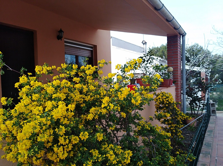 Casa  El seguer. Casa rodeada de naturaleza