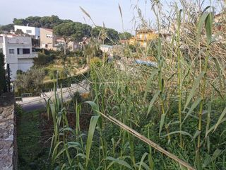 Urban plot in Roca Grossa