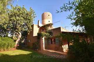 Rural plot in S´Horta
