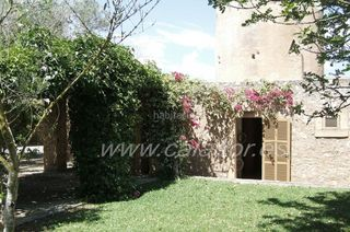 Rural plot in Carrer Molinos