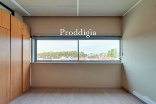 Office space in Torreblanca