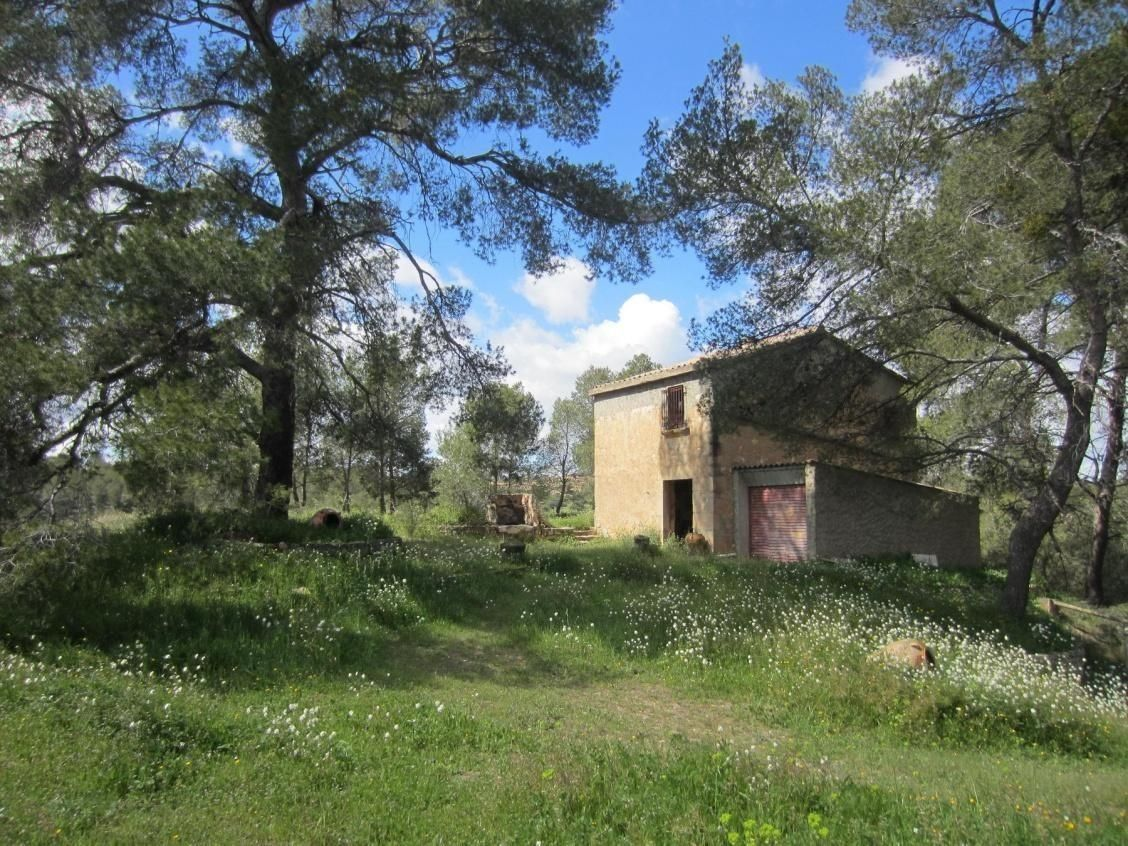 Rural plot in Flix. Regadiu