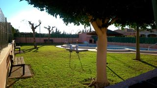 Rent Semi detached house in Calle amapola, 474. Temporada de verano