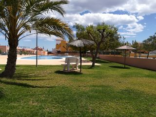 Rent Apartment in Avenida riegos de levante, 207. Piscina comunitaria