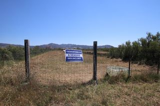 Rural plot in Empuriabrava. Terreno rustico parc aiguamolls