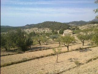 Residential Plot in Partida els gents, 20. Finca con fuente natural propia