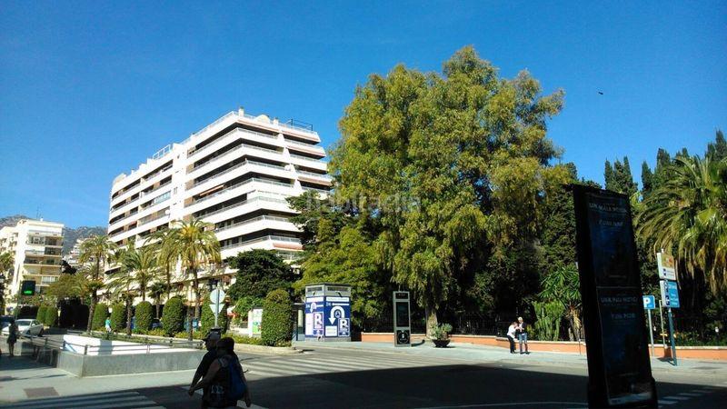 Alquiler Estudio en Avenida arias maldonado, 11. Acogedor apartamento en el centro de marbella (Marbella, Málaga)