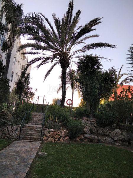 Alquiler Piso en Calle jacaranda, 2. Los árboles / calle jacaranda (Mijas, Málaga)