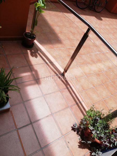 Planta baja en Fernando el catolico, 31. Particular vendo piso bajo magnificas condiciones (Málaga, Málaga)