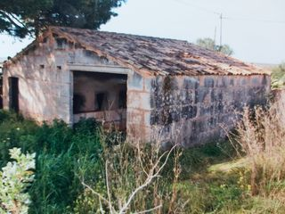 Rural plot  Carretera colonia, sa. Rustica edificable en campos