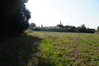 Rural plot in Franqueses del Vallès (Les). 3 hectareas