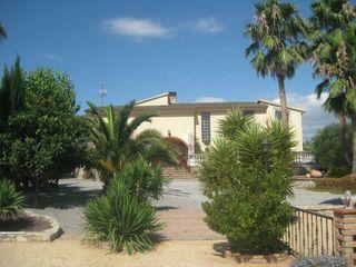Villa  Carrer avellaners (dels). Gran finca en parcel·la plana