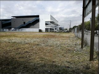 Rent Industrial plot  Pedrosa. Solar industrial edificable c11a
